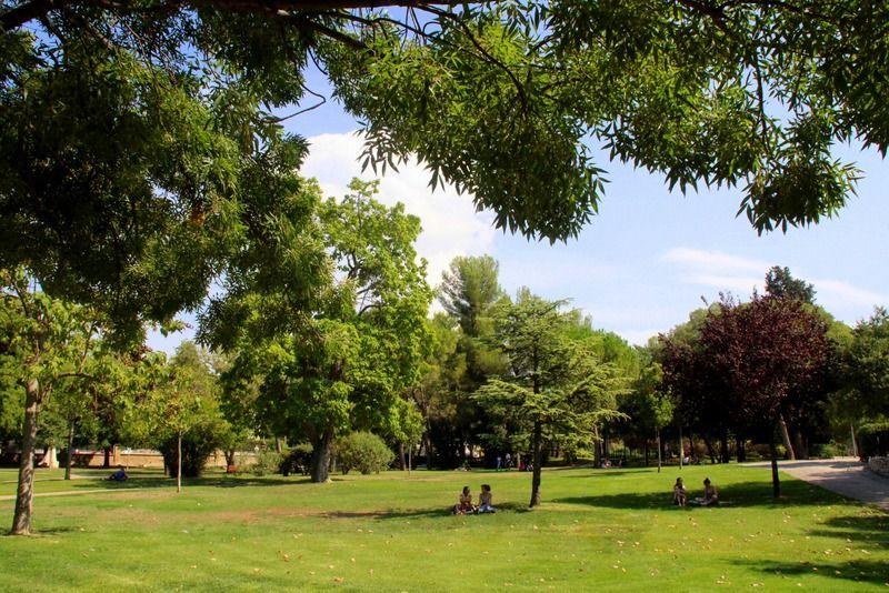 Parc Jourdan 1